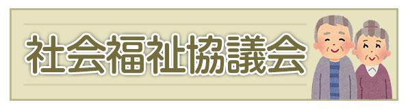 Council of Social Welfare