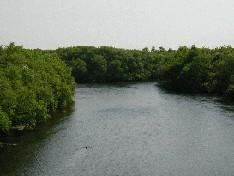 시베쓰가와와 무사 강의 합류 지점